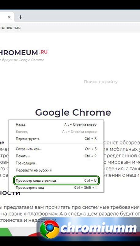просмотр кода страницы chrome