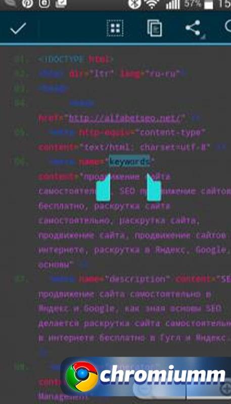 просмотреть код страницы в chrome